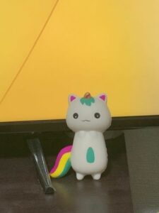Squishy Chat Licorne photo review